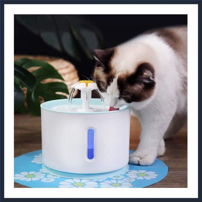 AYUQI Cat Water Fountain