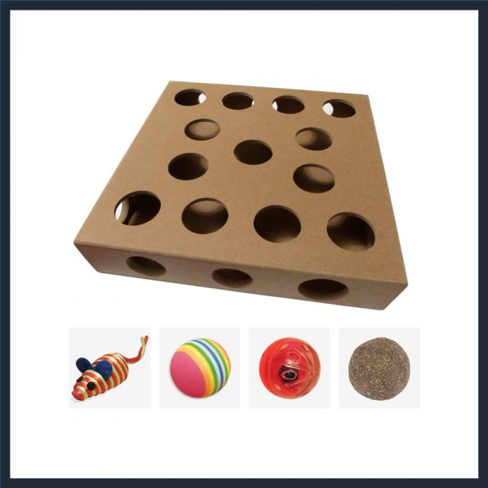 Indoor Cat Toy Puzzle Box