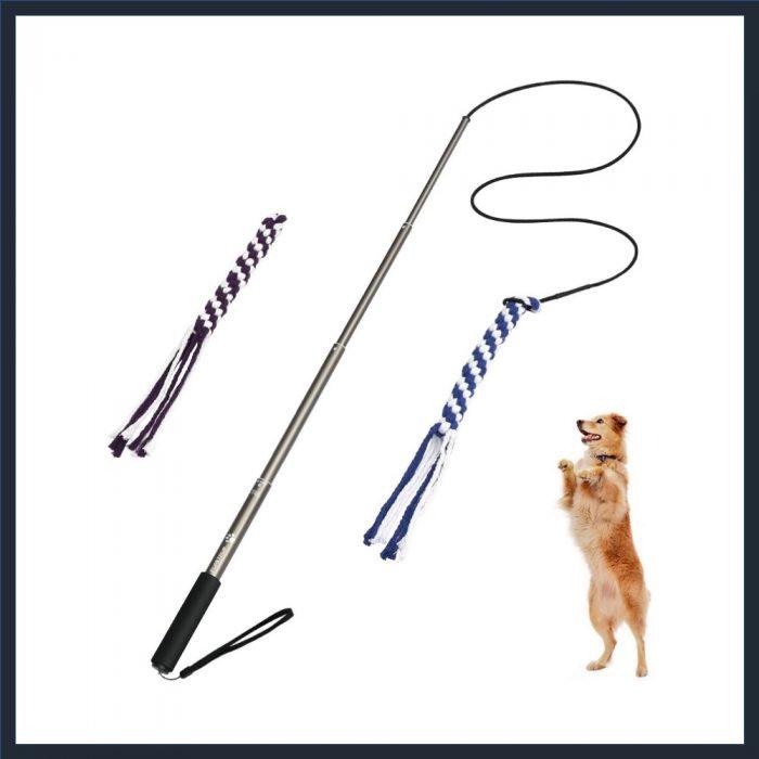 POPETPOP Dog Extendable Teaser Wand